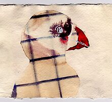 Caged Puffin, 2007 - ink on khadi by phoebetodd