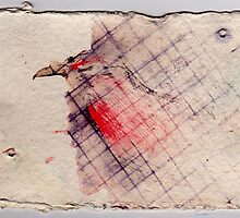 Caged Bird 2, 2007 - ink on khadi by phoebetodd