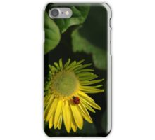 Oh, Happy Day! iPhone Case/Skin