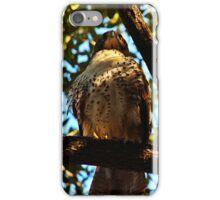 Bird of Prey iPhone Case/Skin