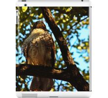 Bird of Prey iPad Case/Skin