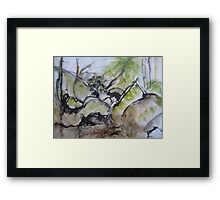 Abstract Nature 5 Framed Print