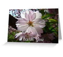 Beautiful White Flower Thank You Card Greeting Card