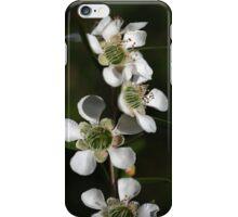 Tea Tree  iPhone Case/Skin