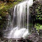 Henderson Falls. The Otways. by John Sharp