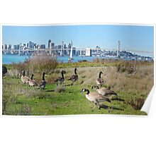 Wild Geese with San Francisco Skyline Poster