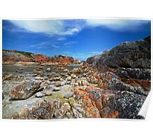 Granite, sand, water and red lichen Poster