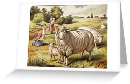 Vinage Picture of Sheep by dorcas13