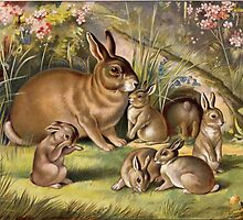 Vintage Picture Rabbit and Bunnies by dorcas13
