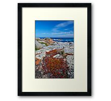 Creeping to the edge Framed Print