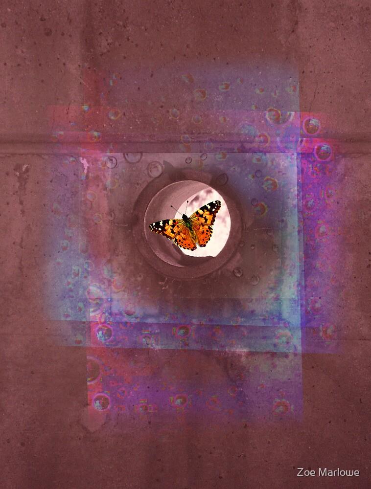 Reverb Wall by Zoe Marlowe