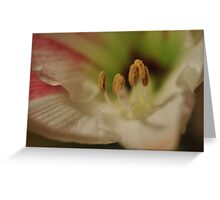 Flower 8 by Laura Lawrence Greeting Card