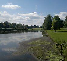 Stonyhurst, Clitheroe, Lancashire,UK by Michelle Boyd