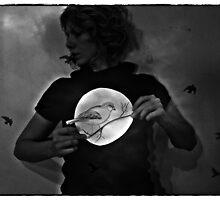 moonlight sonata by ptica