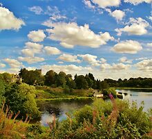 View over Duddingston loch by Mark  Johnstone