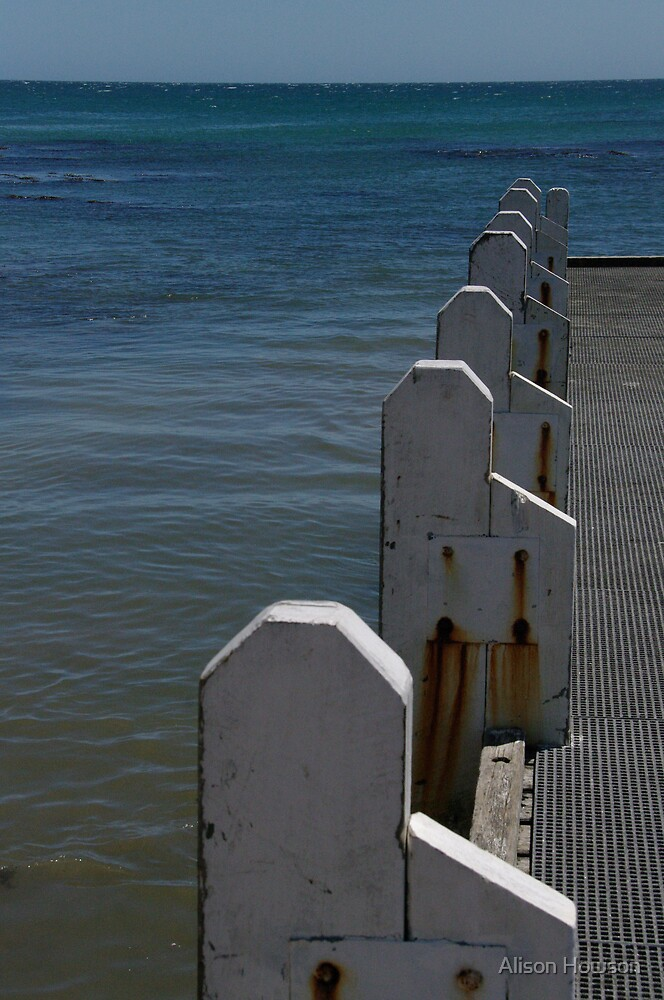 Fishing Jetty 2 - Cape Conran by Alison Howson