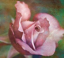 Rose of Romance by Deborah  Benoit