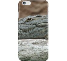 Pretty Crocodile