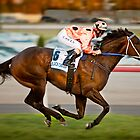 Black Caviar by Paul Grinzi