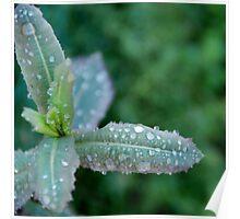 Freezing rain Poster