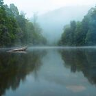 Arthur River Mist by Paul Campbell  Photography