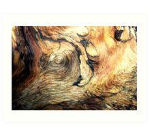 Natural Wooden Elephant Art Print