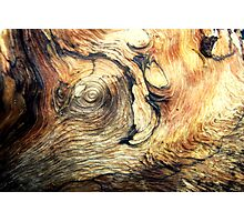 Natural Wooden Elephant Photographic Print