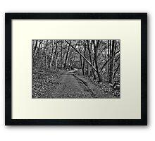 Long Trail B&W Framed Print