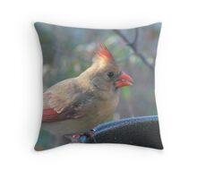 Female Cardinal Throw Pillow
