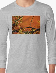 Backlit Branch Long Sleeve T-Shirt