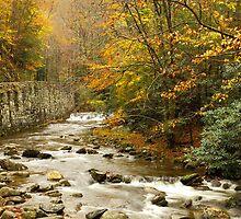 Laurel Creek II by Gary L   Suddath