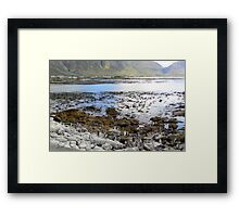 Penguin beach Framed Print