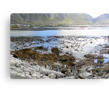 Penguin beach Metal Print