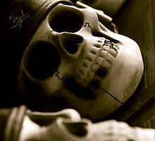 Skull Jack (Horizontal) by milkayphoto