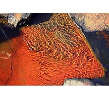 Coloured Rocks Under Water #2 Photographic Print