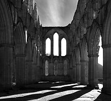 Ancient Arches by Theresa Elvin