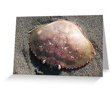 Seascapes: Crabby Greeting Card