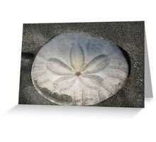 Seascapes: A Dollar For You? Greeting Card