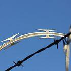 Razor Wire by ZenCowboy