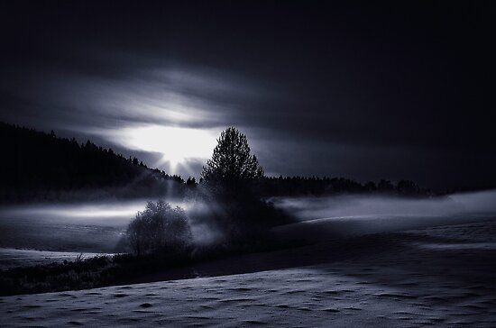Frost light by Erik Brede