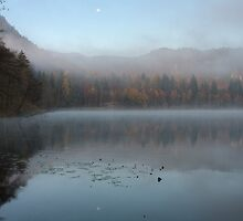 Misty Lake Bled by Ian Middleton