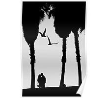 'Love Birds'....(Venice Beach, California.) Poster