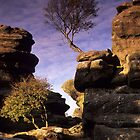 Brimham Rocks by Simon Bowen