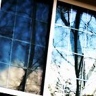 Reflections in a darkened window by Scott Mitchell