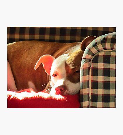 My Angel Sweetie.... Photographic Print