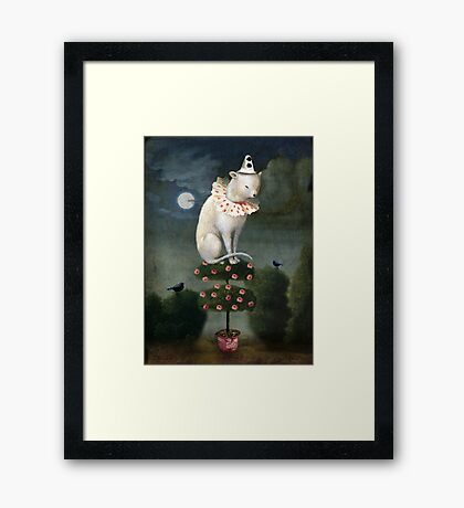 Harlekin Cat Framed Print