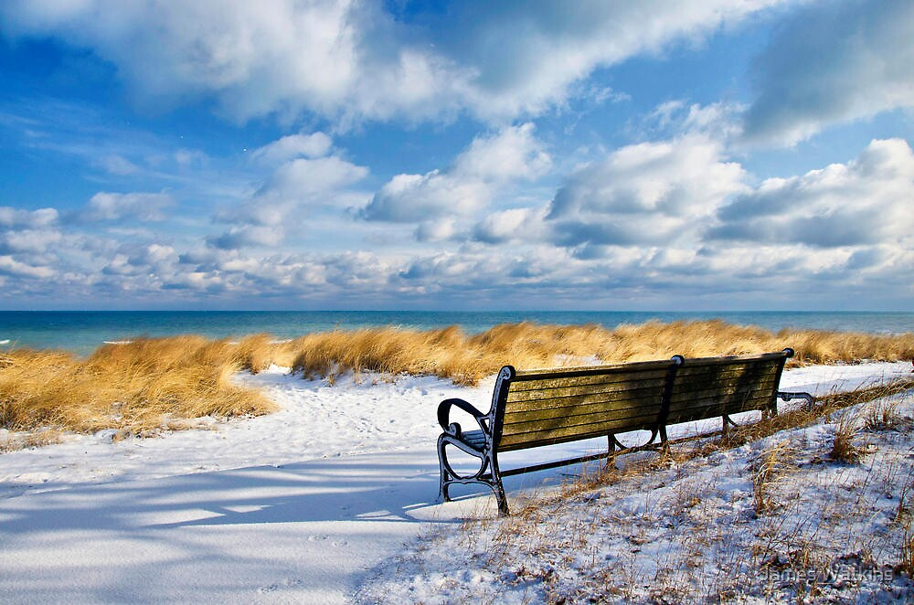 The Bench by James Watkins