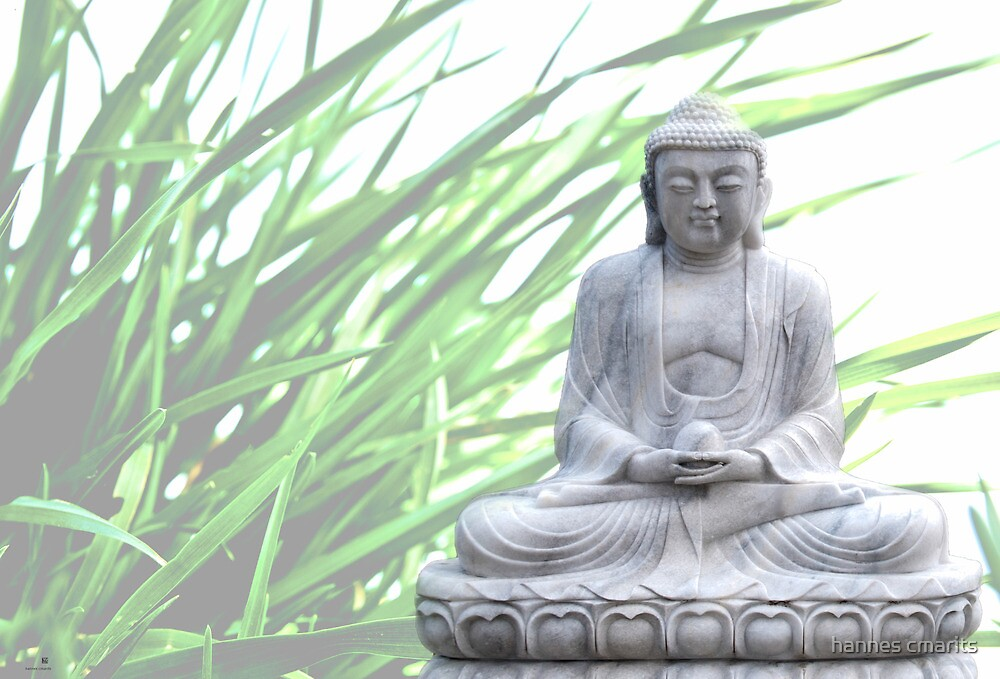 buddha (grass) by hannes cmarits