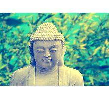 buddha (summer) Photographic Print