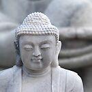 buddha hands by hannes cmarits